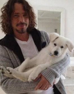 cornell w puppy