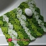 Apple Juicy Washcloth free crochet pattern