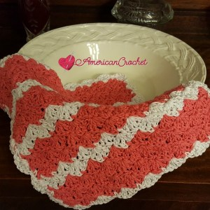 Strawberry Truffle Washcloth and Soap Cozy
