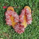 Funky Sandals free crochet pattern