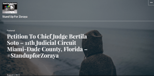 Petition to Chief Judge Bertila Soto - Causes Care2 2015