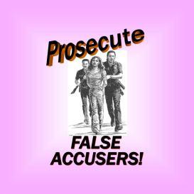 Prosecute False allegations of DV2 - 2016