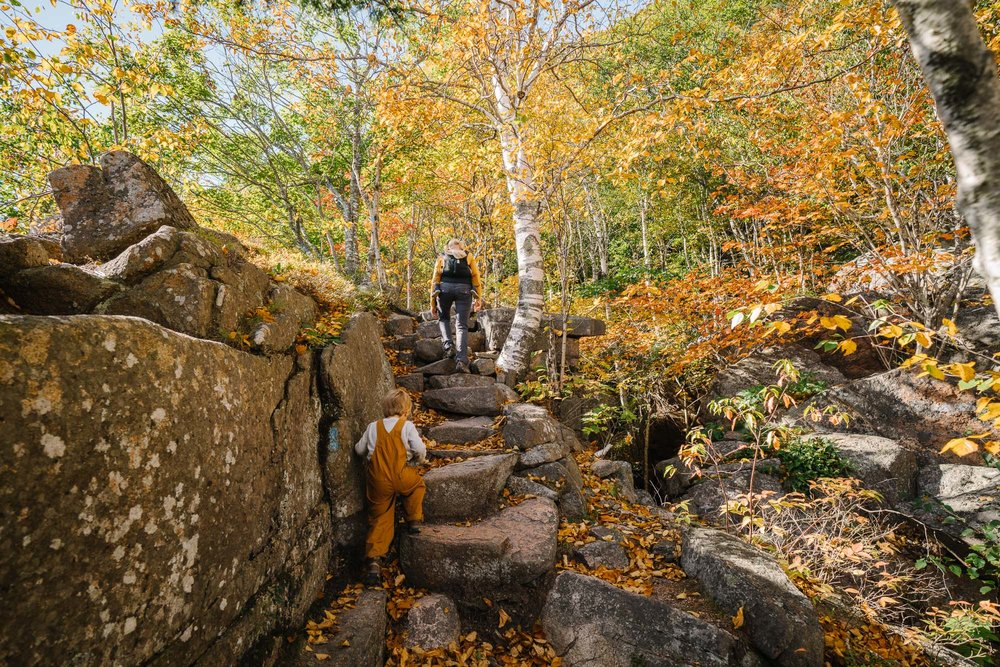 mom and kids hiking in acadia national park