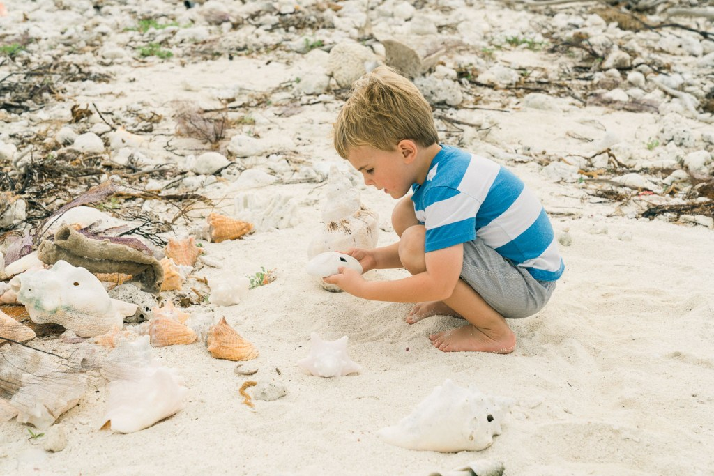 child playing with shells on beach in dry tortugas national park