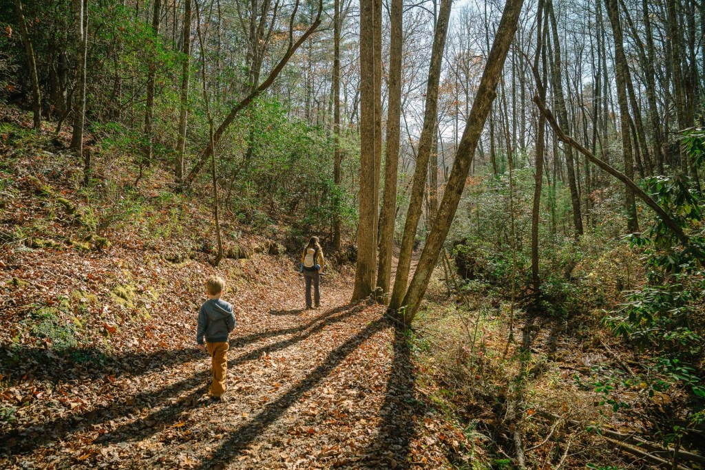family hiking in great smoky mountains national park