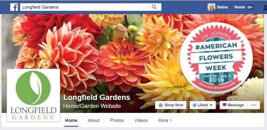 Longfield Gardens highlights American Flowers Week on its Facebook page this week