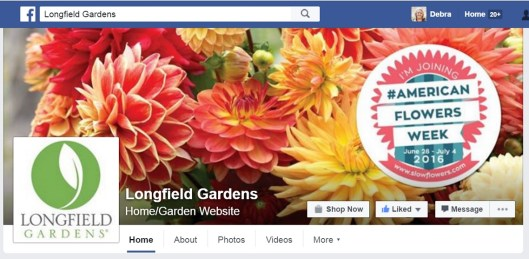 Longfield Gardens highlights American Flowers Week on its Facebook page this week