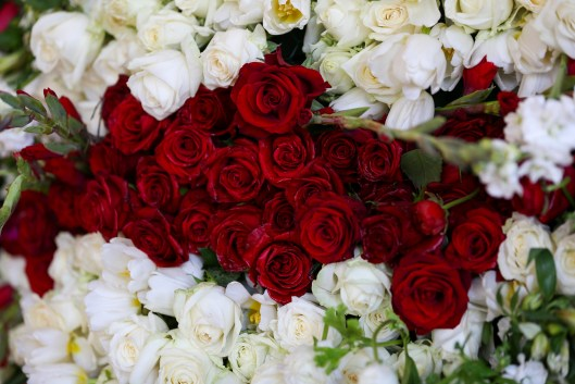 Red and white roses as stripes in detail.