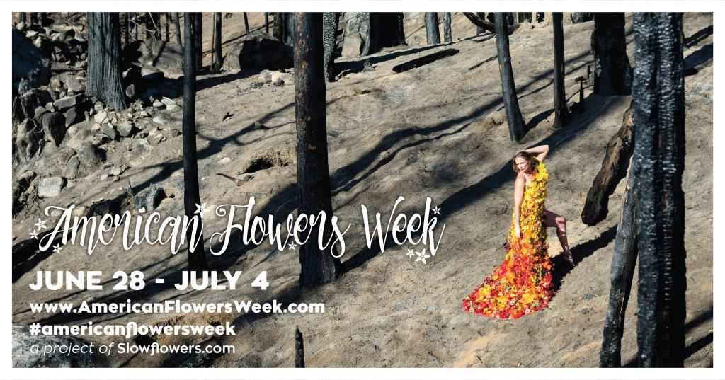 American Flowers Week 2021 Jenny M. Diaz