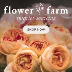 Flowerfarm.com graphic