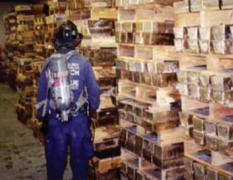 WTC Gold