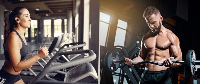 Cardio vs fuerza: ¿cuál es el mejor ejercicio para bajar de peso?