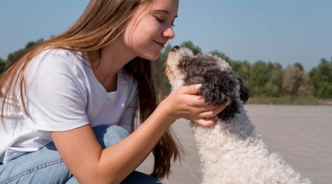 Al adoptar un perro tienes contacto con otro ser vivo, disminuye la sensación de soledad y depresión.