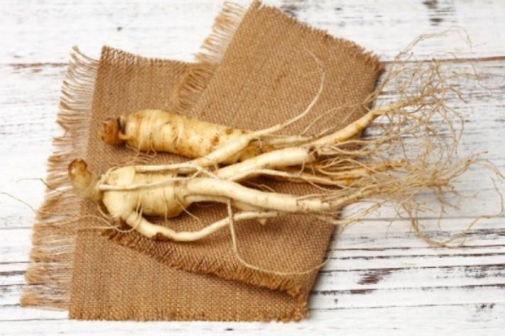 La medicina oriental ha usado durante muchos años la raíz del ginseng como tratamiento para mejorar la mente y reducir los efectos del estrés.