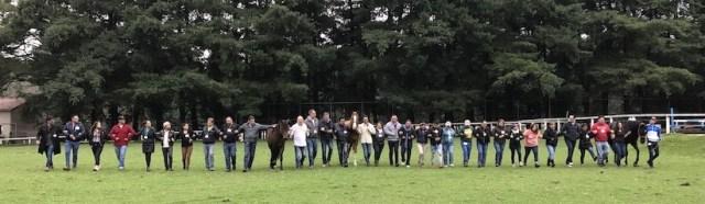 En cada sesión de coaching participa un coach, un especialista de equino y uno o más caballos, dependiendo del grupo de personas.