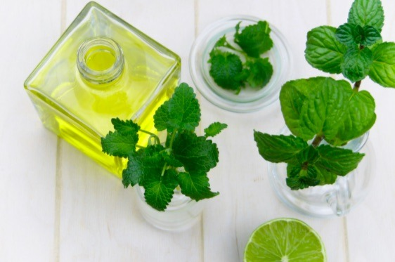 Diversos estudios han comprobado los efectos antiinflamatorios y analgésicos de la menta.