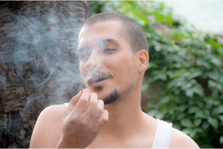 La SCJN eliminó la prohibición absoluta al consumo lúdico o recreativo de cannabis y THC.