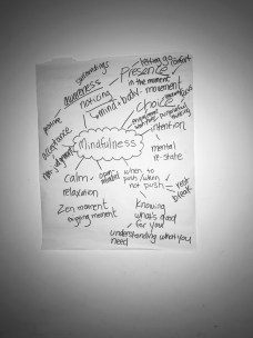 Carey Tinkelenberg's Mindfulness Seminar Chart