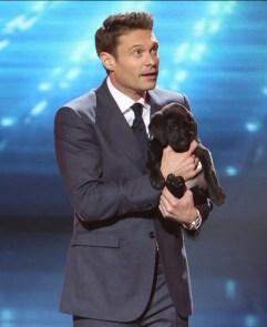 American Idol Ryan Seacrest puppy