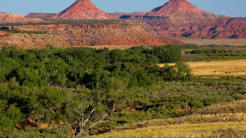 protecting-native-lands-bears-ears