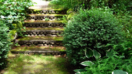 Stone steps of the Olmsted Brothers' design, Dunn Gardens, Seattle (Credit: Susan Barsy)