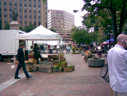 Market day in Portland, ME (Credit: Susan Barsy)