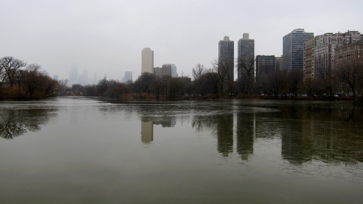 skyscrapers ringing the pond on a grey day.
