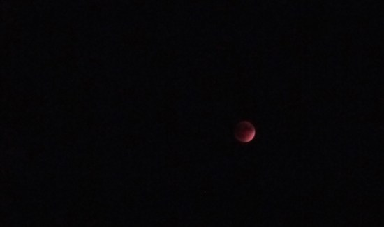 The red moon (September 27, Chicago), © 2015 Susan Barsy