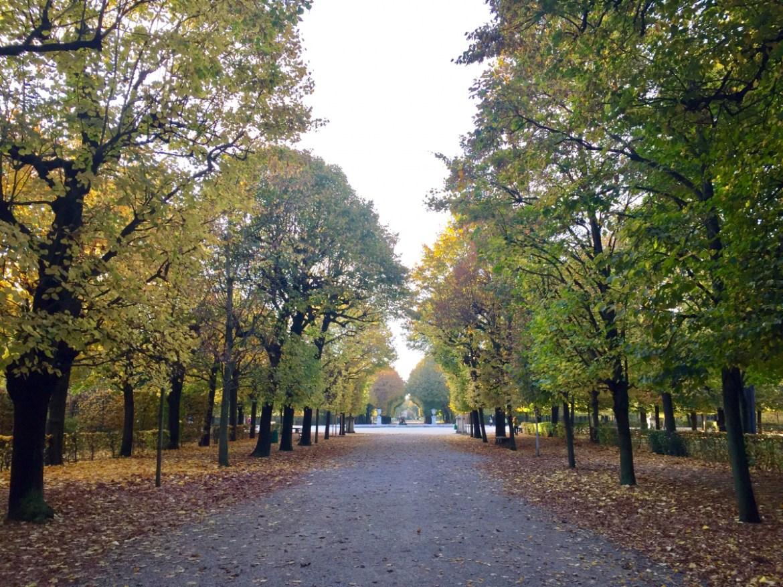Schoenbrunn garden