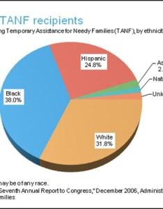 Ff welfare race of tanf recipients  also most recipients are democrats no holds barred political rh liberalforum