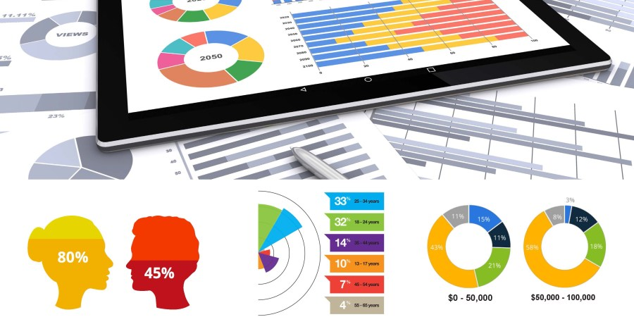 Data visualization tools, data visualization, visual analytics, information visualization, customer profile, business intelligence tools, business intelligence, data-driven marketing, customer profile report, data profile report, data profiling