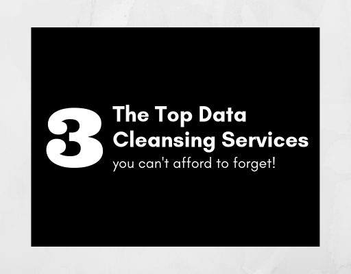 The Top Data Cleansing Services You Can't Afford to Forget