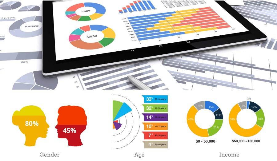 ANS Customer Profile Report