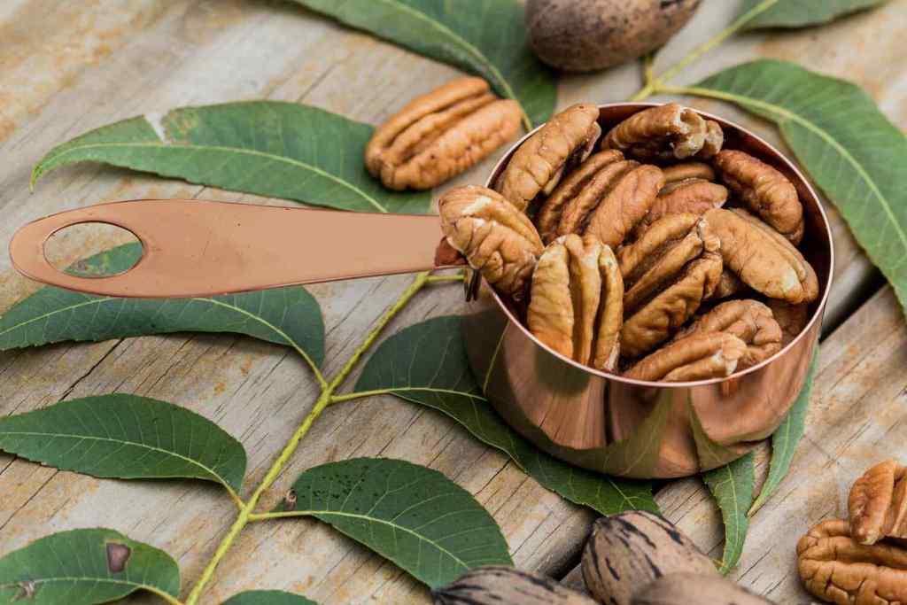 Pecan health benefits