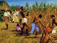 A depiction of slavery in the West Indies, most likely Barbados