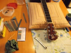 jim sergovic amateur luthier