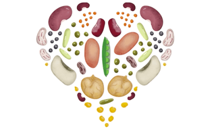 The pluses of pulses in your daily diet