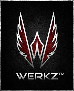 Werkz Logo