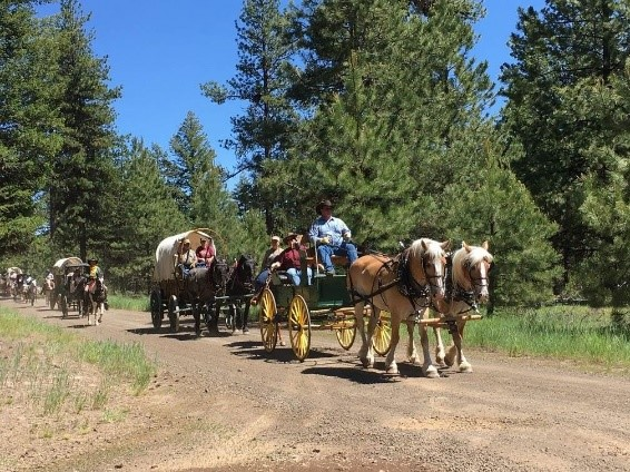 Old West Wagon Train Experience! America39s Hub World Tours
