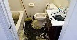 sewer damage restoration