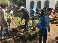 Once the park was clean, Azrou students began planting new trees!