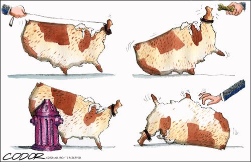 americatsures_-good-doggy_w.jpg