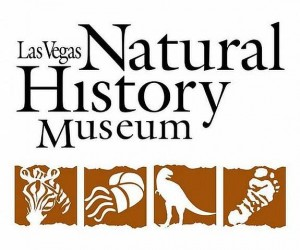 Natural-History-Museum