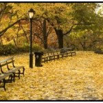 Herbst-Central-Park-NYC