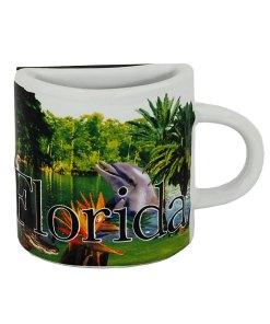 Florida Mug Magnet
