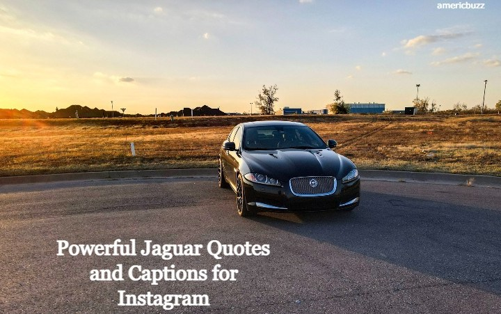 30 Powerful Jaguar Quotes and Captions for Instagram