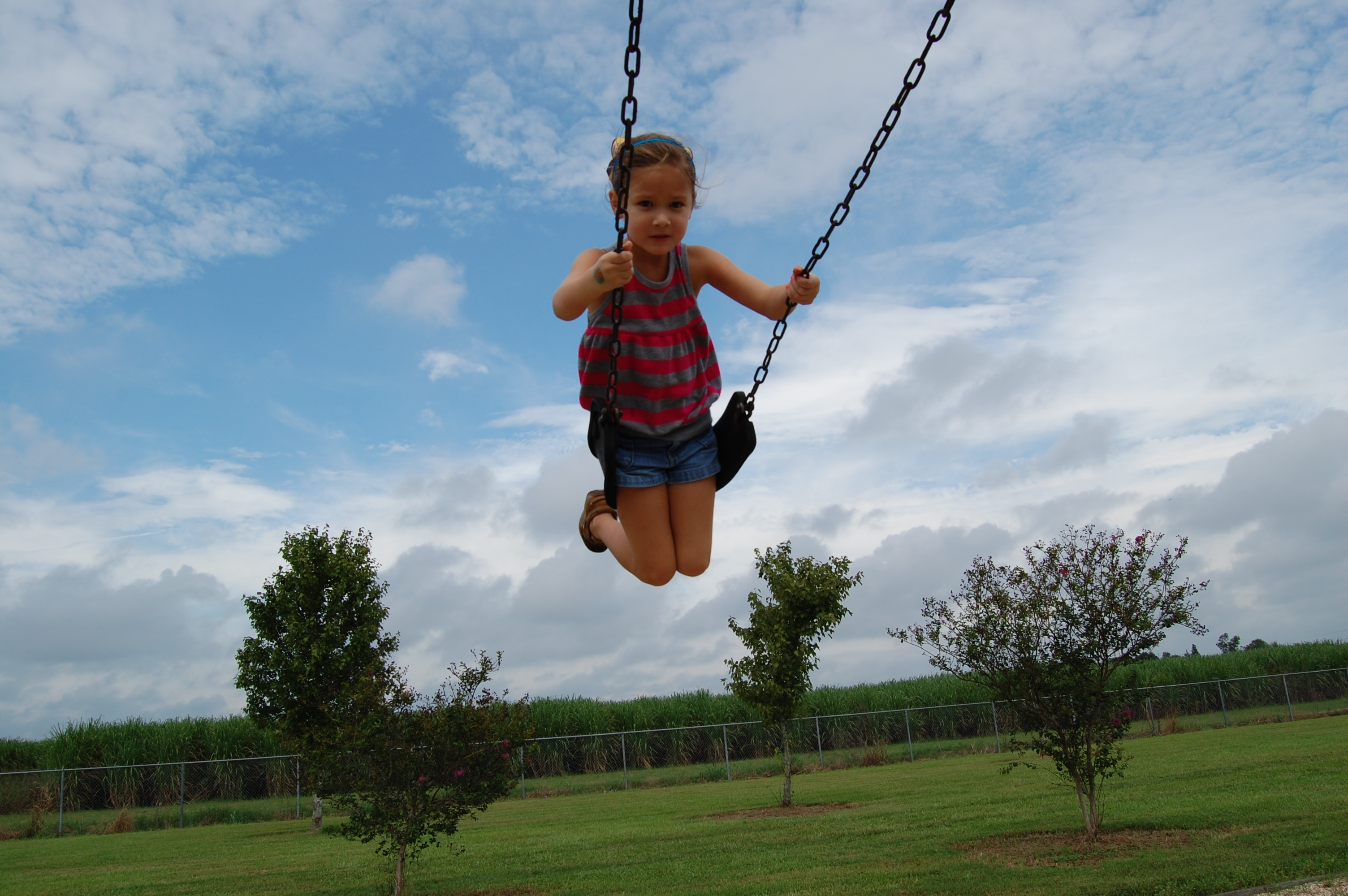 Swing Life Sty 28 Images To Swing Life Away By