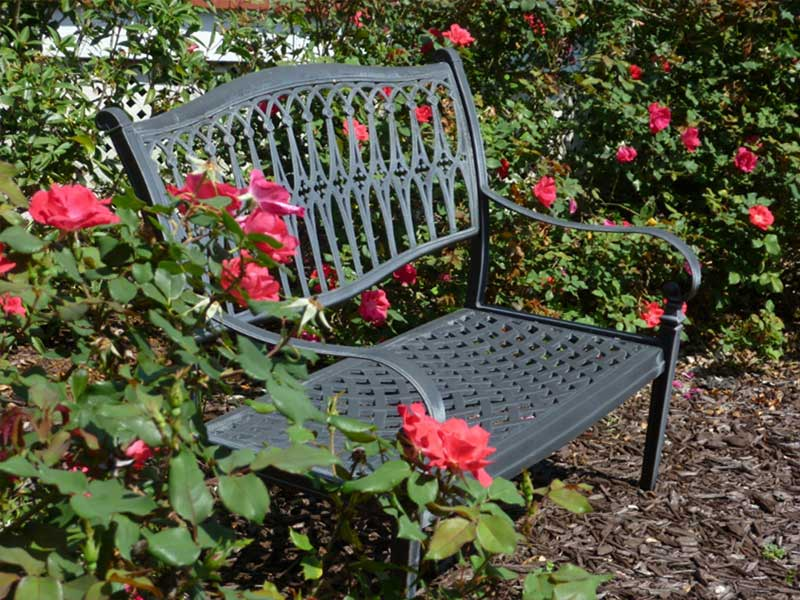 Rose Garden and Bench near Providence Canyon State Park
