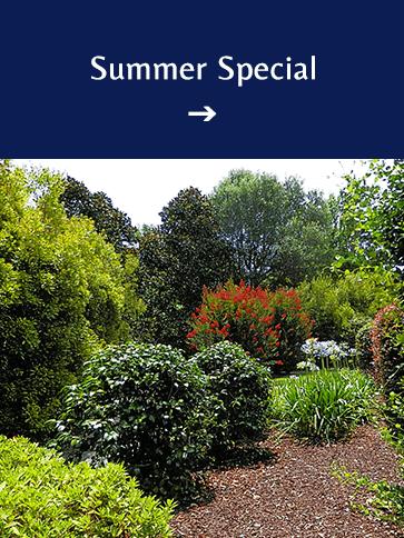 Summer Special   Americus Garden Inn BB, near Andersonville Historic Site