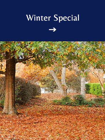 Winter Special   Americus Garden Inn BB, near Andersonville Historic Site